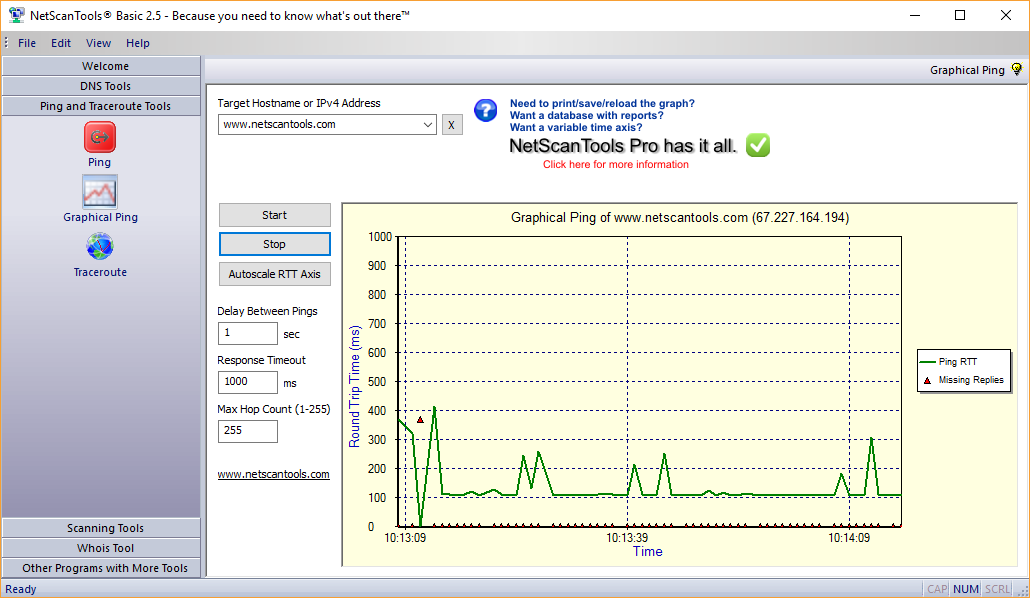 NetScanTools Basic Graphical Ping Screenshot